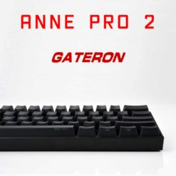 Anne Pro 2 Gateron Switches